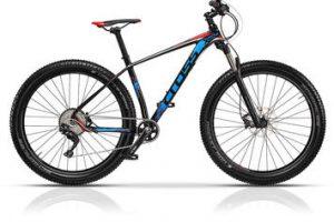 Il perfetto rapporto tra qualità e prezzo: ecco dove comprare le migliori biciclette online